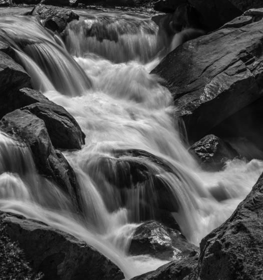 Lower merced river 2