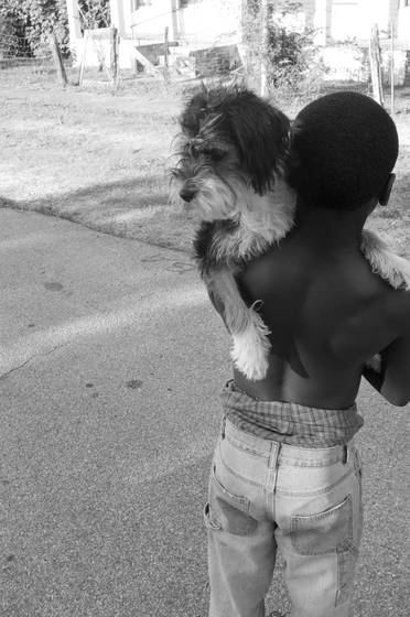 A boy   his dog