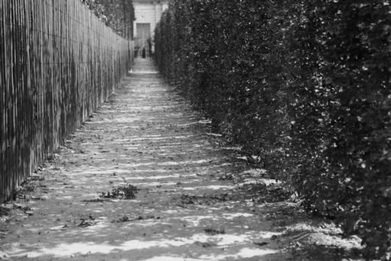 Versailles walkway
