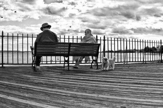 Boardwalk no  9