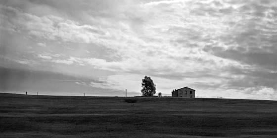 Viterbo farm