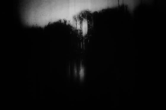Nightfall at the fairy garden