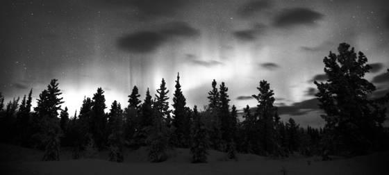 Yukon aurora
