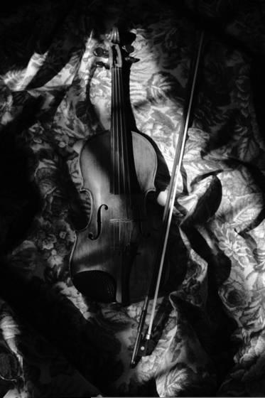 Violin with window light