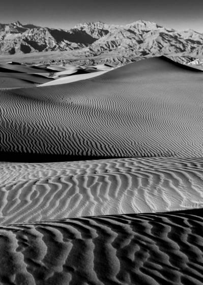 Desert messenger
