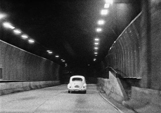 Beetle in the tunnel
