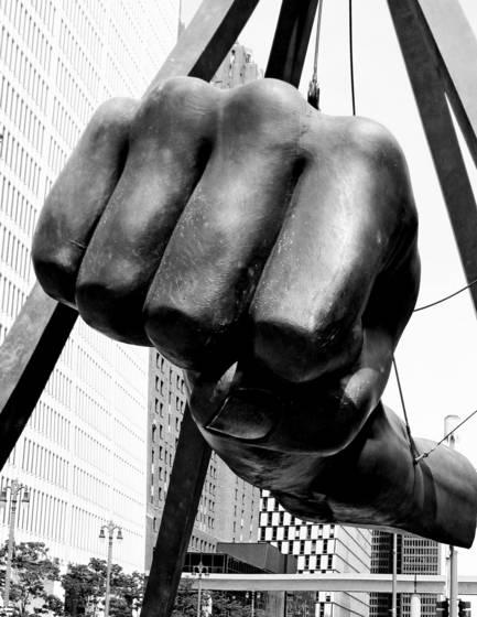 Joe s fist