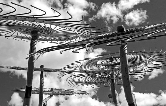 Stone susan  raking the clouds