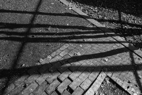 Shadow lattice