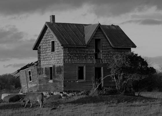 Farmhouse with livestock