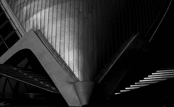 City of arts and sciences 2