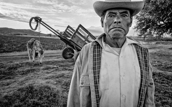 Farmer and cart