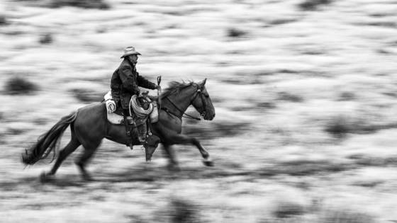 Gallopping cowboy