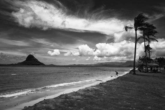 Chinaman s hat