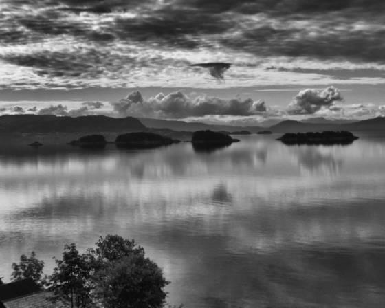 Morning fjord
