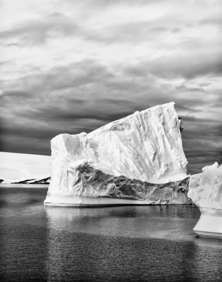 Antartica 8