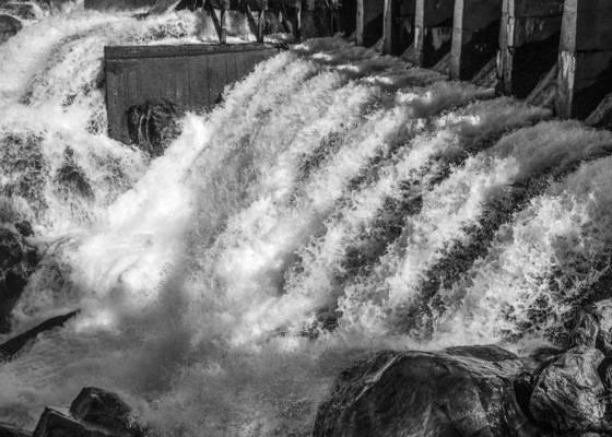 Lake eleanor leakage