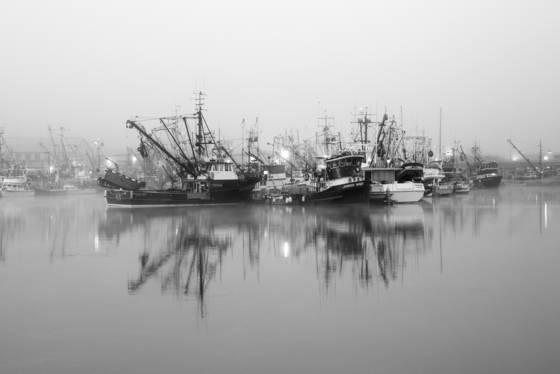 Fisherman s terminal fog
