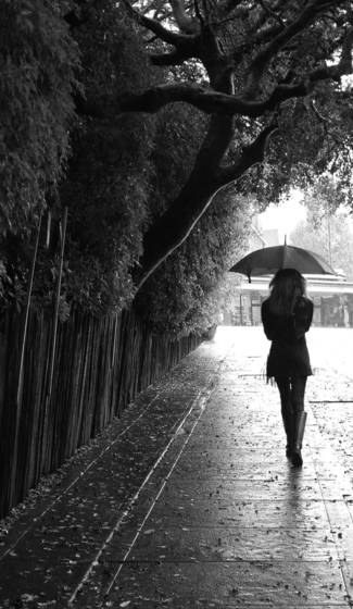 Bk rain