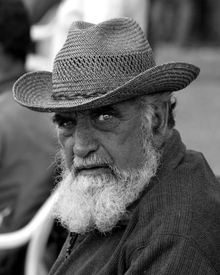 Bearded man at horse show