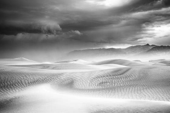 Morning light on dunes