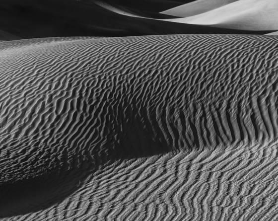 Shifting sands  1