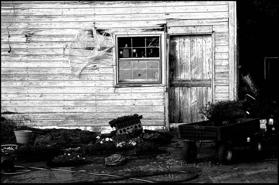 Gardeners shack