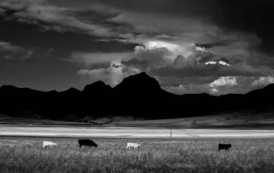 Western landscape  1