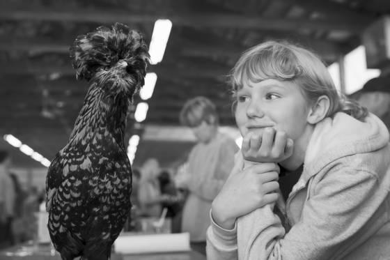 Fowl barn