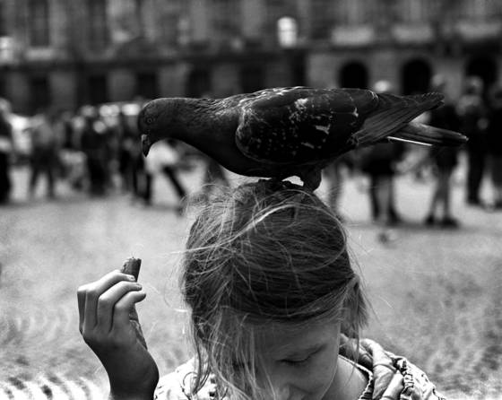 Girl and bird