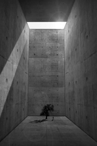Anthropocene cenotaph