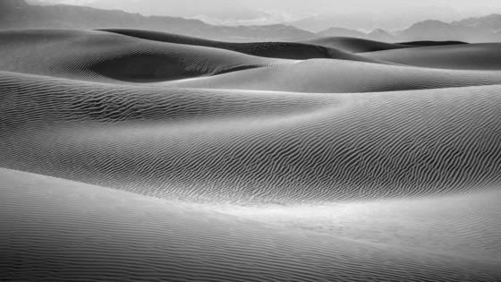 Desert waves 1