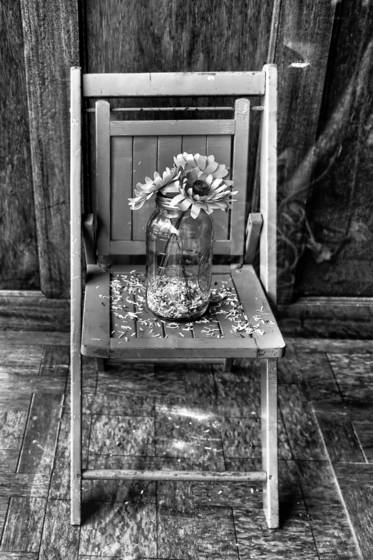 Flowers and folding chair