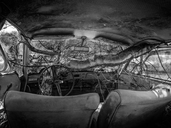 Car wreck 2  6