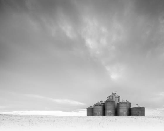 Winter prairie 1