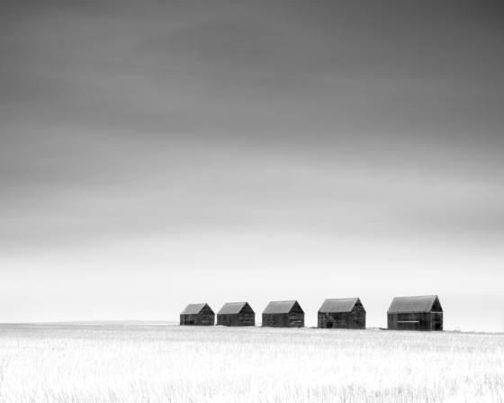 Winter prairie 8