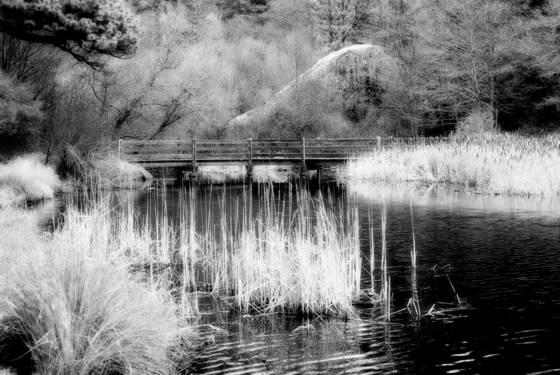 Fullmore lake