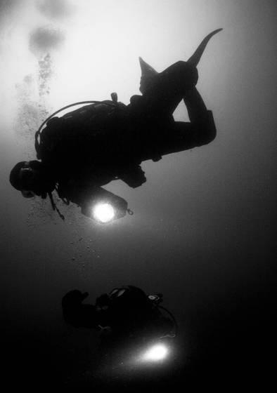Seward diving  12