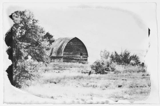 Old barn gum print