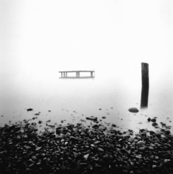 The dock at magnuson park