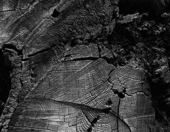 End wood 2