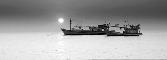 Sunset fleet