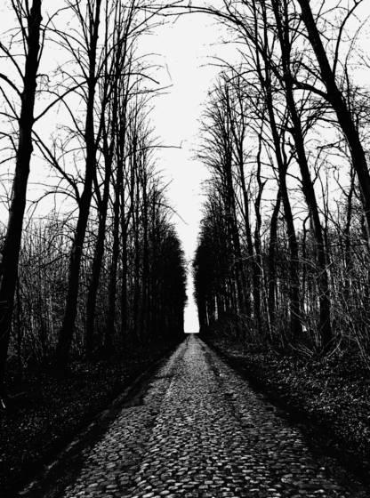 Lane near mons
