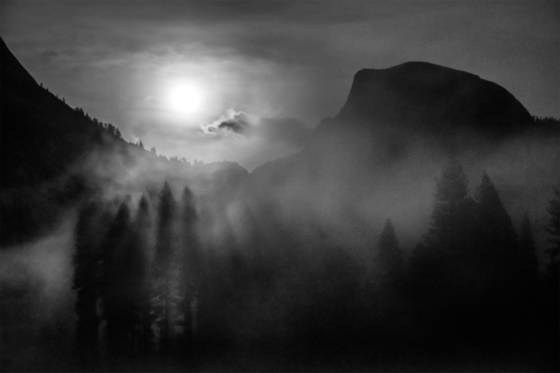 Moonlit silhouette