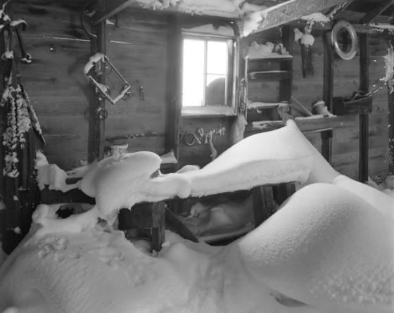 Abandoned homsteader cabin