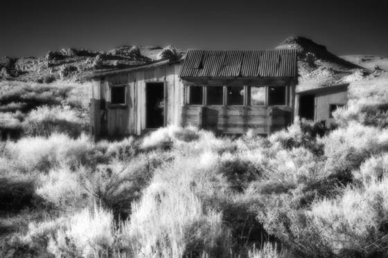 Ghosts of the sagebrush 12