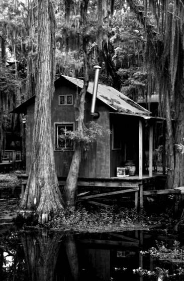 Fishing cabin on caddo lake