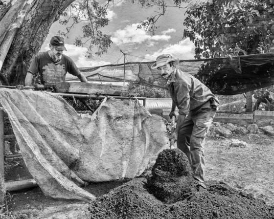 Digging organic farming