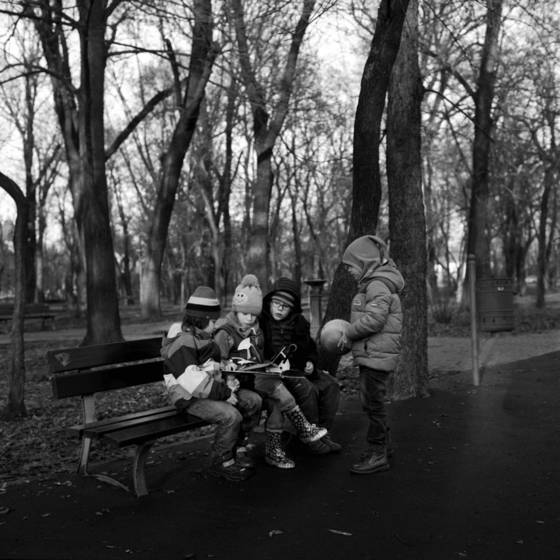 The shaded parks of bucharest 6