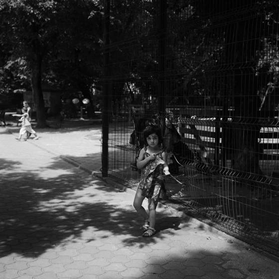 The shaded parks of bucharest 8
